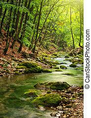 hora, řeka, les, hlubina