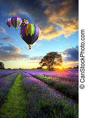 Horký vzduchový balón letí nad levandulovou krajinou