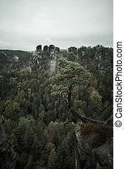 hory, hledisko, mlhavý, deadpan, bastei, sad, ráno, ponurý, švýcarsko, mlha, německo, saxon, mlha, švýcarsko, národnostní, východ slunce