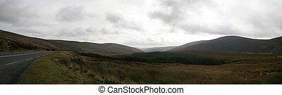 hory, wicklow