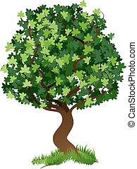ilustrace, strom