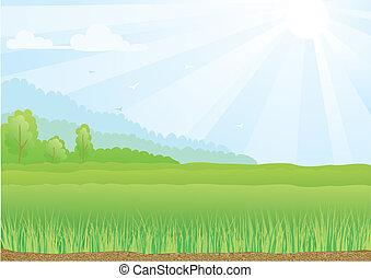 Ilustrace zeleného pole s slunečními paprsky a modrou oblohu.