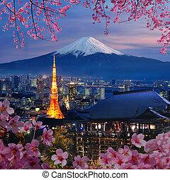 japonsko, pohyb určení, rozmanitý