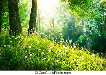Jaro. Krásná krajina. Zelená tráva a stromy
