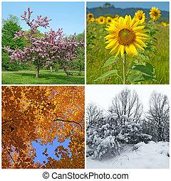 Jaro, léto, podzim, zima. Čtyři sezóny.