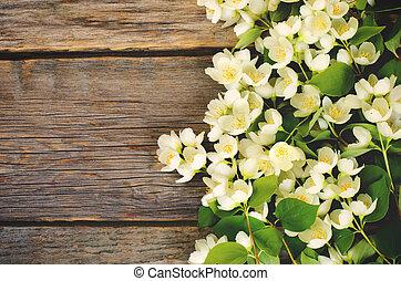 Jasmínové květiny