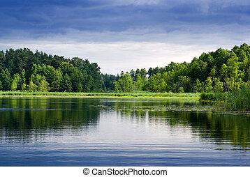 Jezero a les.