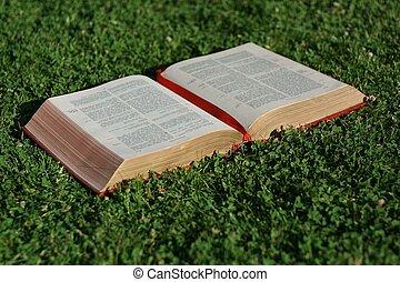Křesťanství, křesťanská bible nebo gospel