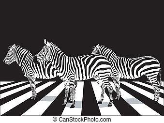 křižování, chodec, zebra