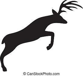 křižování, jelen