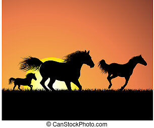 kůň, západ slunce, grafické pozadí