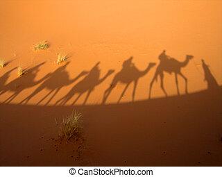karavana, stín