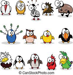 karikatura, vybírání, ptáci