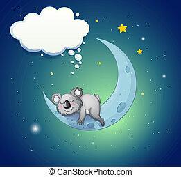 koala, přes, nést, měsíc