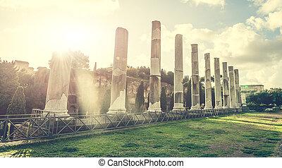 koloseum, starobylý, sloupec