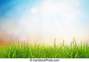 konzervativní, druh, pramen, nebe, obránce, grafické pozadí, pastvina
