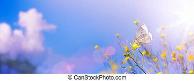 konzervativní, léto, květiny, blbeček, proložit, štěstí, nebe, zbabělý, podzim, bojiště, grafické pozadí, neposkvrněný, exemplář, krajina, butterfly.
