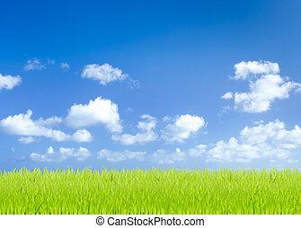 konzervativní, snímek, nebe, mladický grafické pozadí, pastvina