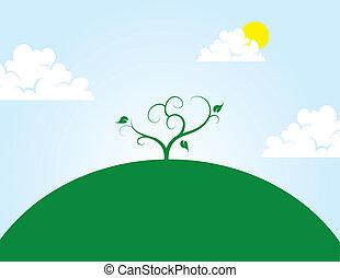 kopec, strom