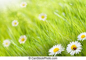 Kosa s květinami a jednou dámou, tohle je slunečný den