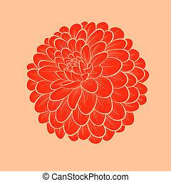 Krásná květinová kytka, která je v grafickém stylu, izolovaná na bílém pozadí