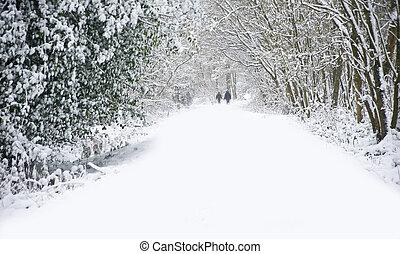 Krásná zimní sněžná scéna s hlubokým sněhem a s rodinou chodícími psy
