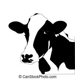 kráva, big, vektor, čerň, portrét, neposkvrněný