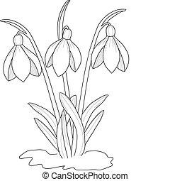 Kreslení sněhodné kapky