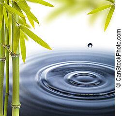 kruh, zředit vodou ivoty, klidný, lázně