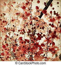 květ, ebrovat, grafické pozadí, kopie, bambus, červeň