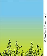 květinový, vektor, grunge, grafické pozadí