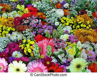 květiny, ukázka