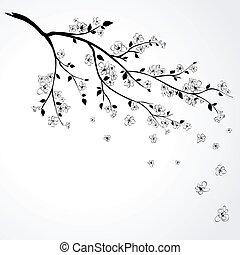 Kytící větev japonské třešně