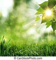 léto, blbeček, abstraktní, grafické pozadí, ráno, časný, les