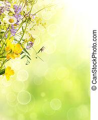 Léto květiny
