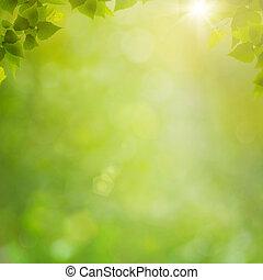 Léto v lese, abstraktní prostředí s čerstvými folií a štěbem
