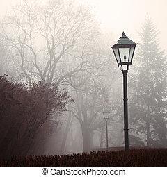 lampa, mlha, sad, ulice, les