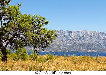 Landscape s mořem a horami