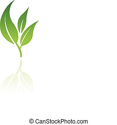 Leaf 8