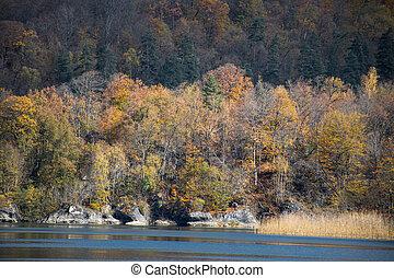 les, (blue, večer, krajina, barvitý, hora., azerbaijan., goy-gol, podzim, jezero, názor, bezvětrný, ganja, lake), ohromení
