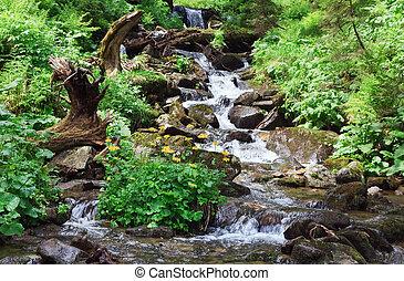 Letní horská řeka