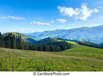 Letní horská krajina