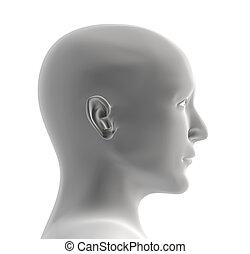 Lidská hlava šedé barvy