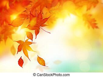 list, podzim, padající
