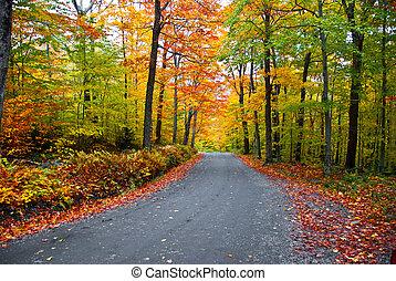 listoví, podzim