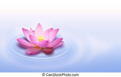 Lotusová květina