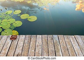 Mírné místo v rybníku