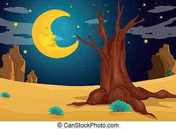 Měsícový večer
