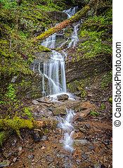 Malé hořké horské vodopády na jaře