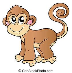 malý, šikovný, opice
